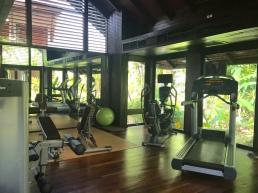 18.tk.gym.1